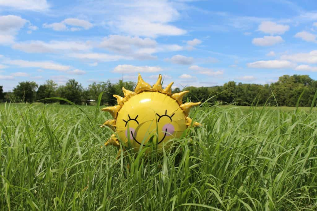 A smiling inflatable sun sits amongst the grass under a blue sky